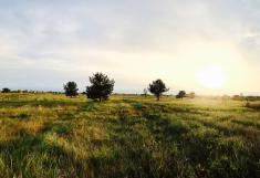 Восход, коттеджный поселок