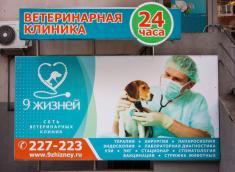 9 жизней, ветеринарная клиника