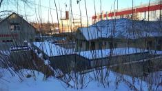 Рязанская городская ветеринарная станция, ГБУ