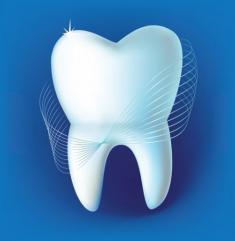 Ваш стоматолог, ООО, стоматологическая клиника