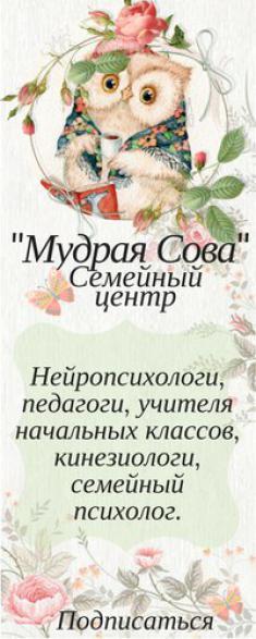 Мудрая сова, семейный центр, ИП Удалов А.В.