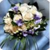Цветы, ИП Логинов А.С.