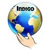 Индиго, клуб развития