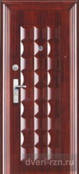 Металлическая дверь DR-24