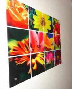 панно с фотопечатью  Цветы(1)