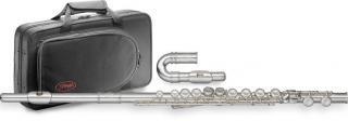 флейта с кейсом