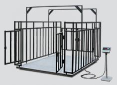 Весы платформенные с ограждением для взвешивания животных ВП-ЖО