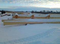 Начало рубки из качественного зимнего леса
