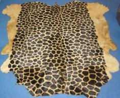 Шкура жирафа