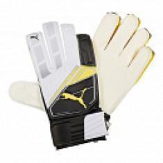 Перчатки вратарские Puma Universal